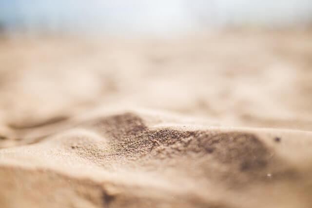 Como Ensinar o seu Gato a Usar a Caixa de Areia